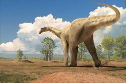 Динозавров уничтожили... бабочки – новейшие исследования