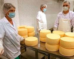 Россельхознадзор вновь выразил недовольство качеством украинских сыров