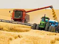 Сколько зерна собрано в Азербайджане?