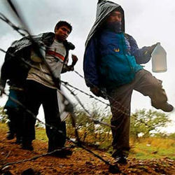 Эксперты оценили усилия Греции по пресечению нелегальной иммиграции