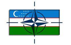 Усилит ли НАТО национальную валюту и режим Каримова в Узбекистане