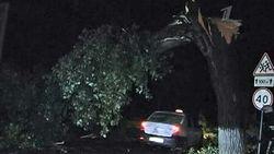 За ночь в четырех областях Украины пронесся ураган - последствия