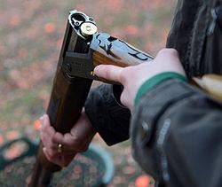 Путин определил жесткие штрафы за браконьерство законом