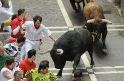 Туристам: бык искалечил экстремала во время фестивального забега в Испании
