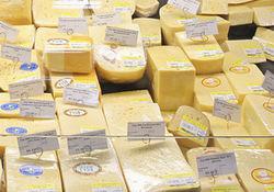Диетологи: наиболее полезный сорт сыра найден