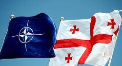 Грузия передумала быть в составе СНГ и целится в НАТО