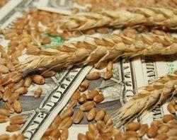 Эксперты: рынок пшеницы начал продолжительный тренд
