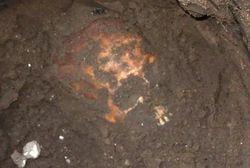В Харькове у Исторического музея нашли человеческий череп