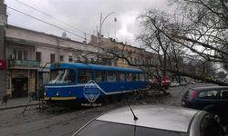 Шторм в Одессе – потоп, падения деревьев и сорванные крыши