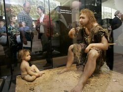Ученые о новых версиях вымирания неандертальцев
