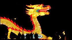 Китай за полгода заработал на туризме 203 миллиарда долларов