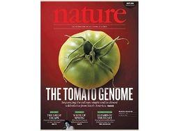 Опубликован состав генома томата