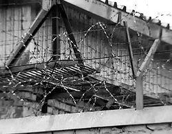 Полиция закрыла город Копейск, где продолжается тюремный бунт