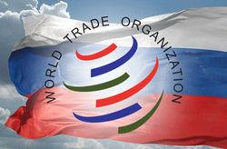 Курс рубля через год после присоединения России к ВТО: что выиграно и утрачено - трейдеры