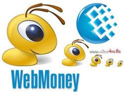 Деятельность WebMoney в Украине незаконна – Миндоходов