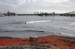 Туристам: из-за мертвых креветок, песок на пляжах Чили стал... красным