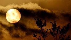 Солнце готовится к смене магнитной полярности – NASA
