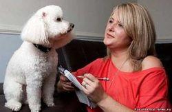 В США разрабатывают устройство, позволяющее понимать язык животных