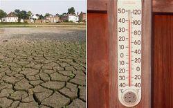 За неделю аномальная жара убила почти 800 жителей Великобритании