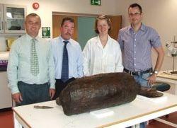 В Ирландии обнаружили сливочное масло, сбитое 3 тысячи лет назад