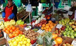 В Украине будет больше оптовых сельхозрынков