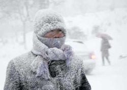 От морозов в России уже погибло 88 человек, пострадало 1200 человек