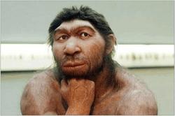 Расшифрован ген неандертальца Алтая: кто же наши предки