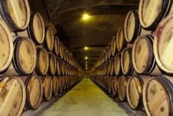 Молдовский винный экспорт будут контролировать внутри страны
