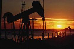 Инвесторам: Азербайджан готовит новую нефтехимическую концепцию