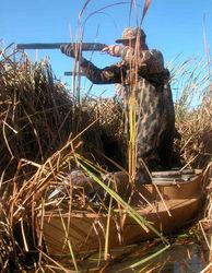 Открытие сезона охоты в Украине перенесли на неопределенный срок