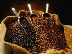 Цены на кофе, выросшие вдвое за прошлый год, могут подскочить еще на 48 процентов?