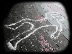 Расследовать убийство семьи в Туле отправятся московские оперативники