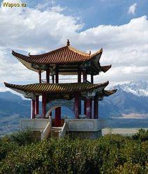 С какой целью китайские бизнесмены посетили Узбекистан?