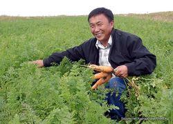 В чем нуждаются фермеры Кыргызстана?