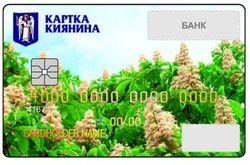 Жители столицы обзаведутся социальными карточками