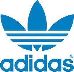 Когда стартует грузинское производство «Adidas»?