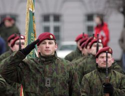 Как в НАТО оценивают литовских военных?