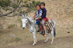 Каково положение детей в Кыргызстане?