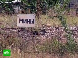Как проходит очищение территории Чечни от мин?
