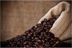 Почему кофе будет только дорожать?