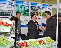 В Ташкенте одновременно проходят несколько выставок