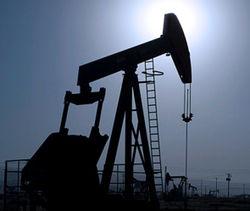Беларусь будет добывать нефть в Венесуэле