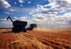 Инвесторам: как проходят полевые работы в Азербайджане?