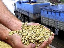 Сколько инвестпроектов реализовано в хлебопекарной отрасли Узбекистана?