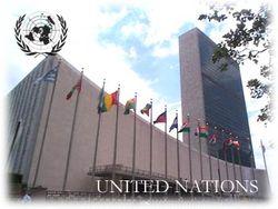 ООН беспокоит дорогое украинское жилье