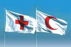 В Москве от злого умысла грабителей пострадало общество Красного Креста