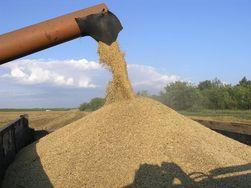 Какова урожайность зерна в Украине в 2011 году?