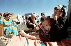 Сколько афганцев попросили приют в Таджикистане?