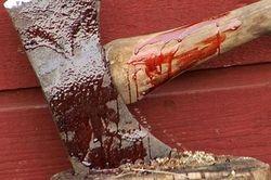На Днепропетровщине мужчина убил отчима топором