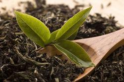 Инвесторам: в Грузии открылась новая чайная фабрика